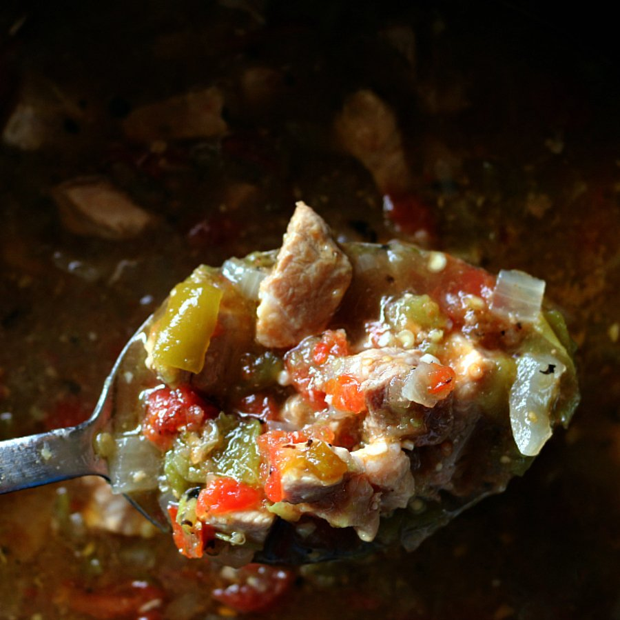 A New Slow Cooker Green Chile Chili IMG_1515
